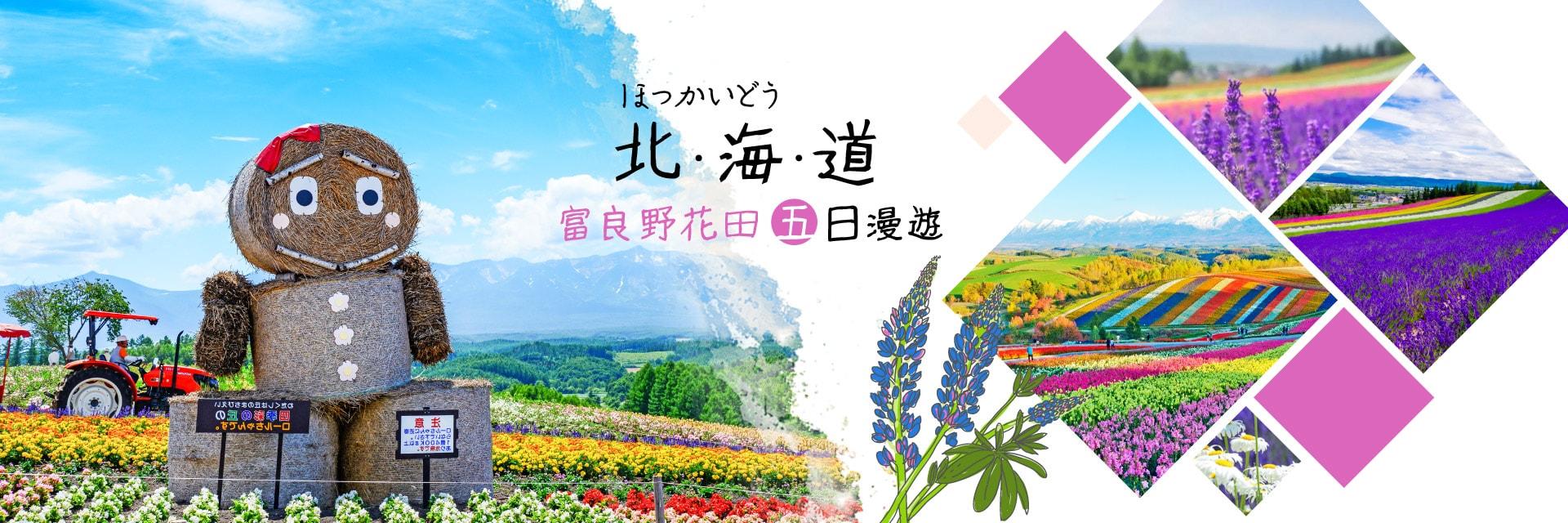 上順旅行社、日本旅遊、北海道、彩虹花田