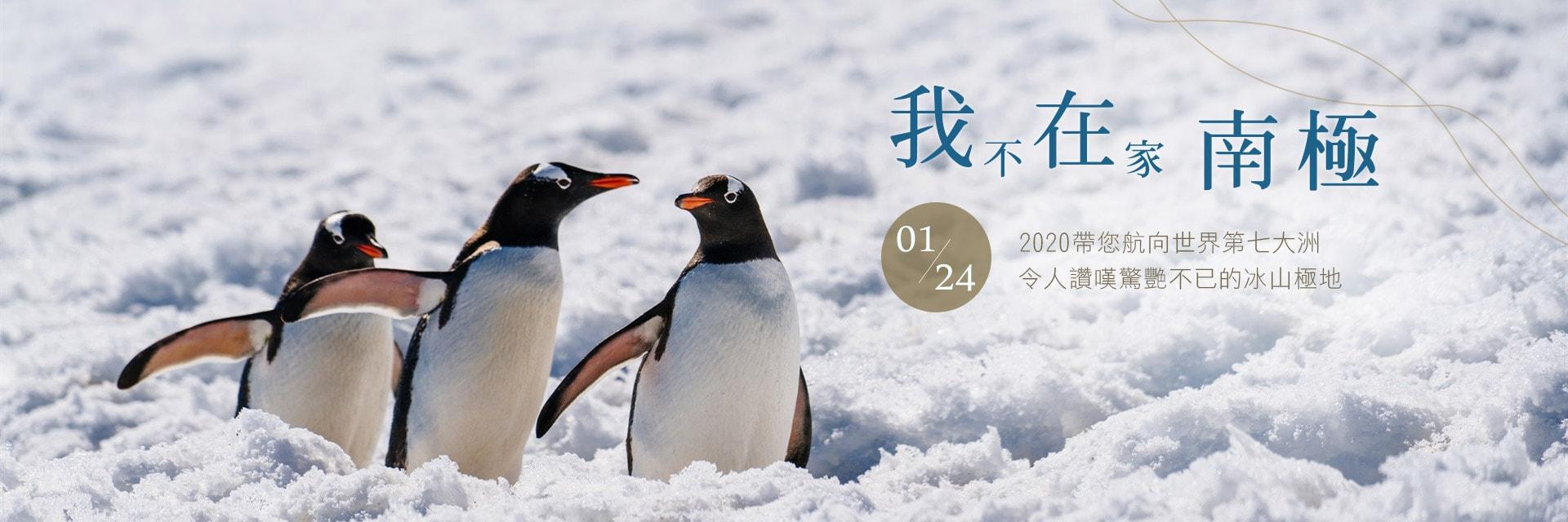 上順旅遊、南極、企鵝