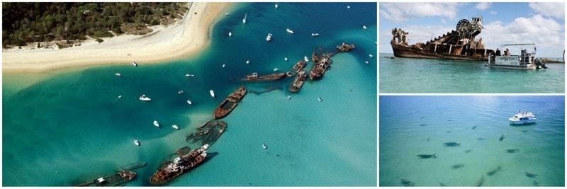 fun游东澳~黄金布里斯本海豚岛滑沙冲浪深度10天